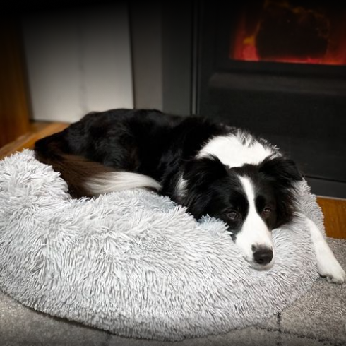The Original Calming Bed helps to keep your dog warm and supported no matter what.
